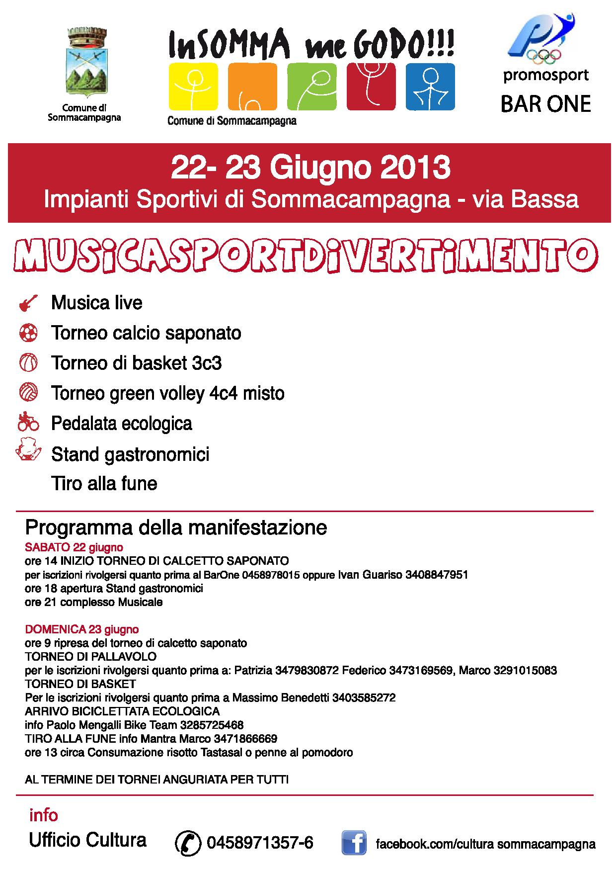 INSMMGD FRONTE 2013-page-001